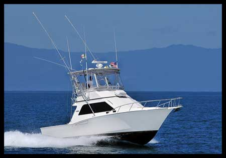35-ft-Cabo-Fishing-Yacht-Up--to-8-people