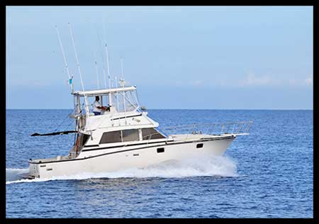 38-ft-Bertram-Fishing-Yacht---Up-to-1-People