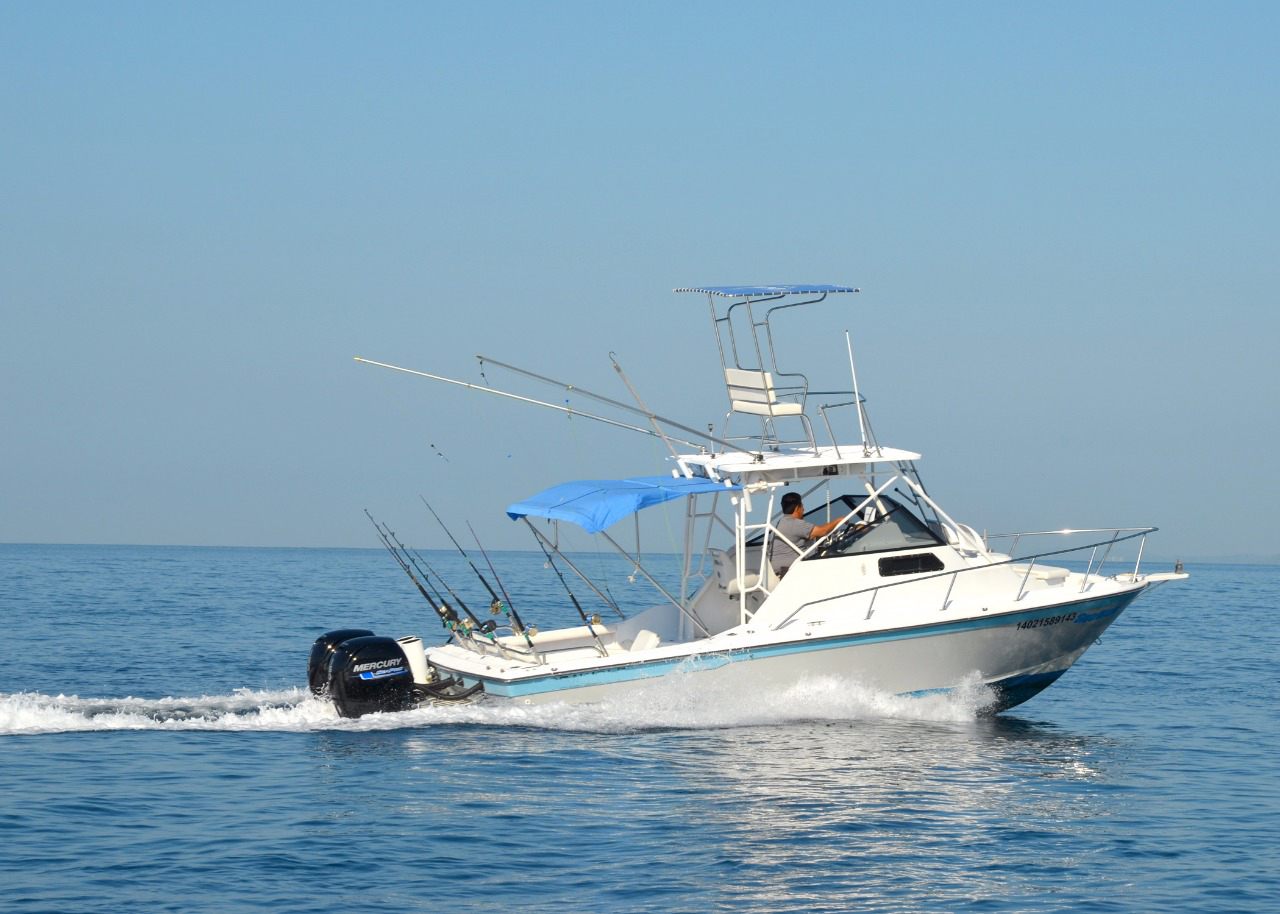 29 ft. Super Panga - Power Boat & Fishing